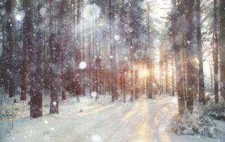ashery snowy day